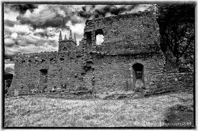 St Mullins Abbey (3)