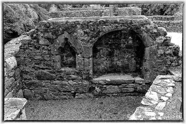 St Mullins Abbey (4)